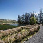 Killhope footpath near a pond